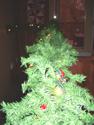 Christmas_dec_4