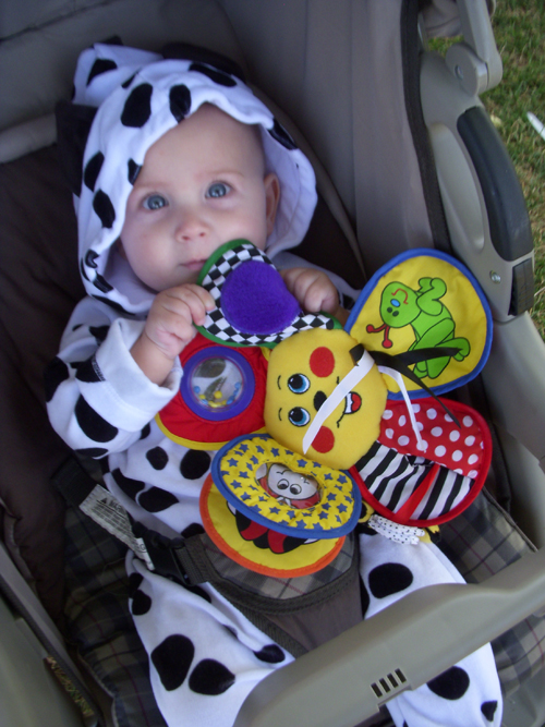 Charlie as cow